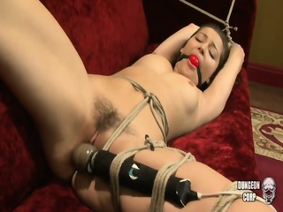 Dani Daniels - Bound, Gagged And Vibbed